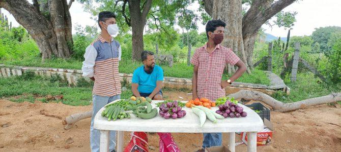 Sales of Organic Vegetables